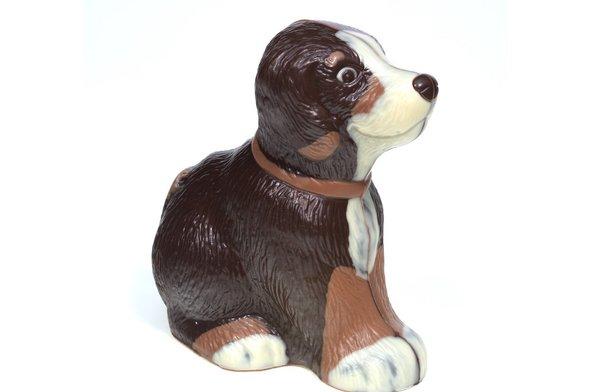 Schokoladenhund Bello